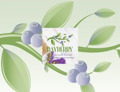 Bayberry_brochure